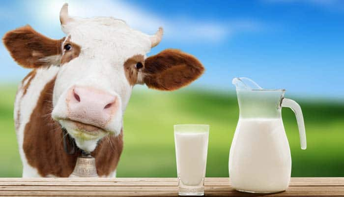 16 Milk brands declared safe in Pakistan
